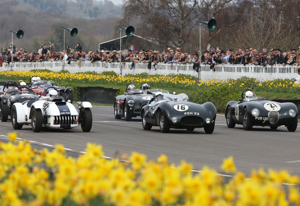 wp goodwood grid